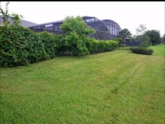 Lawn Mowing Contractor in Clarcona, FL, 32710