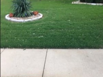Lawn Mowing Contractor in Fort Worth, TX, 76162