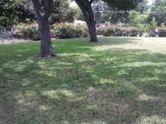 Lawn Mowing Contractor in Southlake, TX, 76092