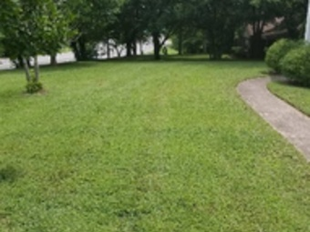 Lawn Mowing Contractor in Portland, TN, 37148