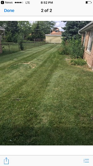 Lawn Mowing Contractor in Chicago, IL, 60618
