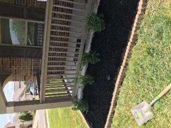 Lawn Mowing Contractor in Cibolo, TX, 78108