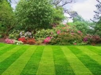 Lawn Mowing Contractor in Chicago, IL, 60617