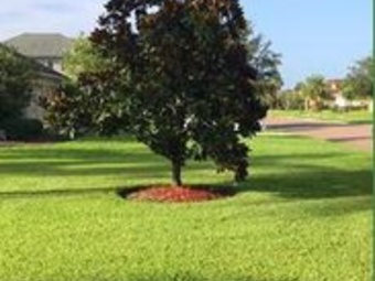 Lawn Mowing Contractor in Saint Augustine, FL, 32092