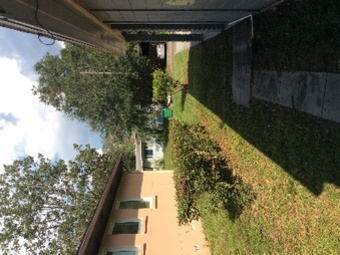 Lawn Mowing Contractor in St Petersburg , FL, 33716