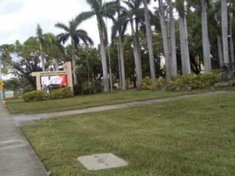 Lawn Mowing Contractor in Miami, FL, 33169