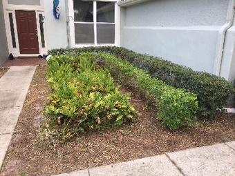 Lawn Mowing Contractor in Orlando, FL, 32827
