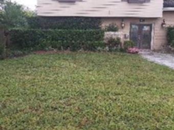 Lawn Mowing Contractor in Orlando, FL, 32806