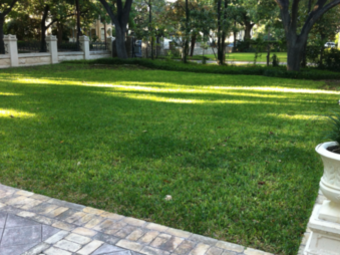 Lawn Mowing Contractor in Mathis, TX, 78407