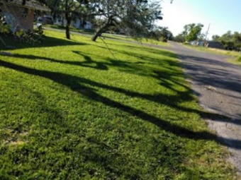 Lawn Mowing Contractor in Ingleside, TX, 78382