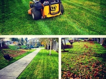 Lawn Mowing Contractor in Hollywood , FL, 33023