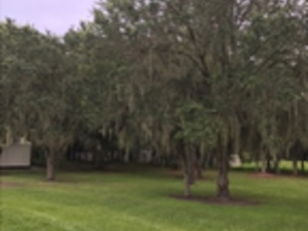 Lawn Mowing Contractor in Fort Meade, FL, 33841