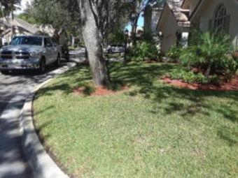 Lawn Mowing Contractor in North Fort Lauderdale, FL, 33068