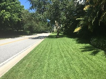Lawn Mowing Contractor in Coral Springs, FL, 33071