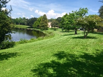 Lawn Mowing Contractor in Orlando, FL, 32827