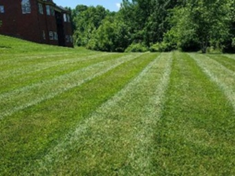 Lawn Mowing Contractor in Antioch , TN, 37013
