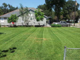 Lawn Mowing Contractor in New Orleans , LA, 70122