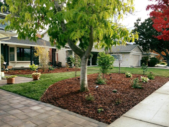 Lawn Mowing Contractor in Sunnyvale, CA, 94086