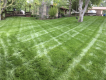 Lawn Mowing Contractor in Fowler , CA, 93625