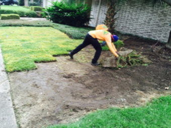 Lawn Mowing Contractor in New Orleans , LA, 70131
