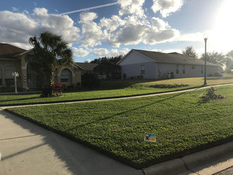 Lawn Mowing Contractor in Davenport , FL, 33897