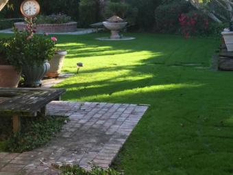 Lawn Mowing Contractor in Bakersfield, CA, 93309