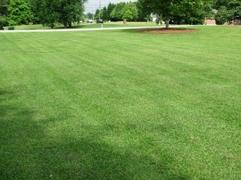 Lawn Mowing Contractor in Georgetown, GA, 39854