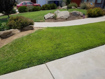 Lawn Mowing Contractor in Fresno, CA, 93727