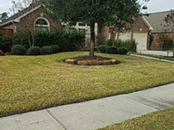 Lawn Mowing Contractor in Houston, TX, 77389