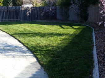 Lawn Mowing Contractor in Sacramanto, CA, 95838