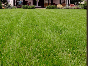 Lawn Mowing Contractor in Sacramento, CA, 95817