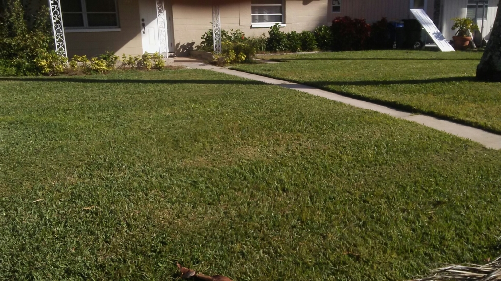 Lawn Mowing Contractor in Fort Myers, FL, 33908