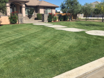 Lawn Mowing Contractor in Atwater , CA, 95301