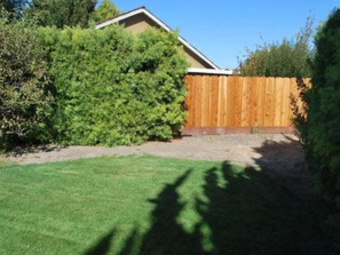 Lawn Mowing Contractor in San Jose, CA, 95156