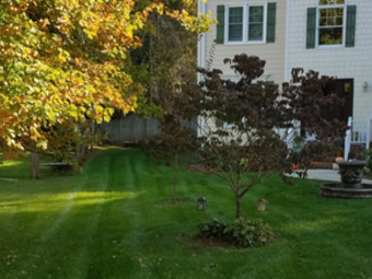 Lawn Mowing Contractor in Raleigh, NC, 27615