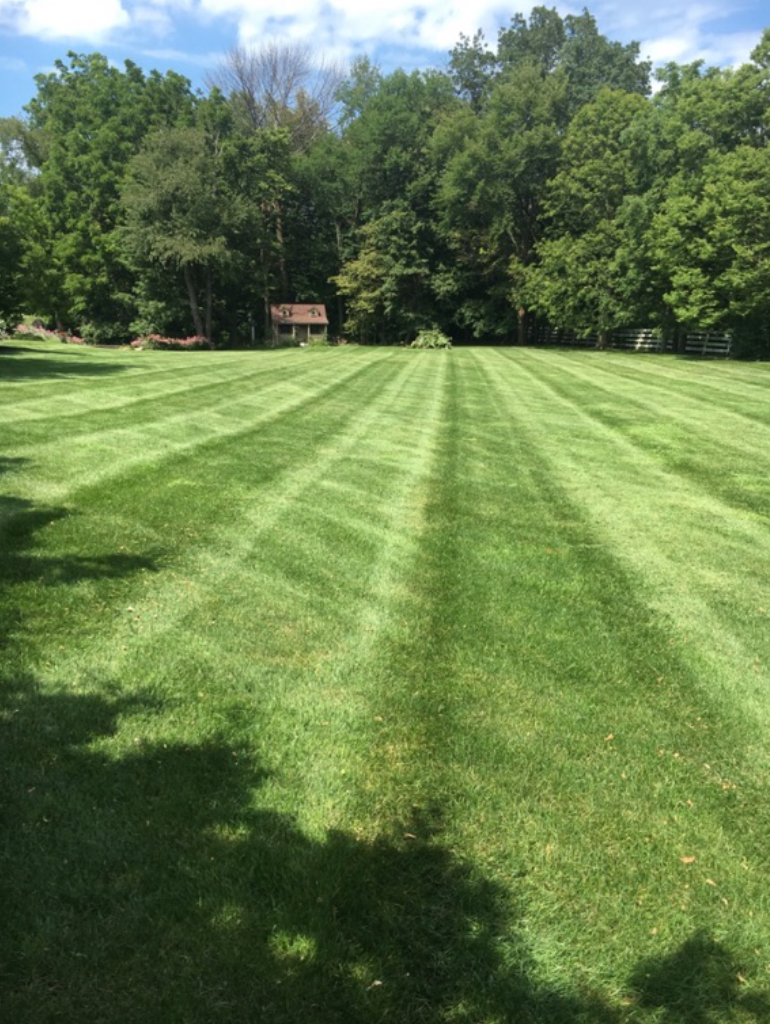 Lawn Mowing Contractor in Greenwood, IN, 46143