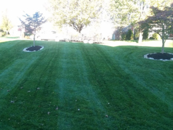 Lawn Mowing Contractor in Louisville, KY, 40228