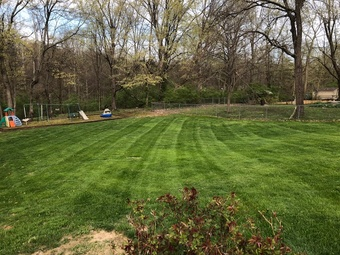 Lawn Mowing Contractor in Louisville , KY, 40228