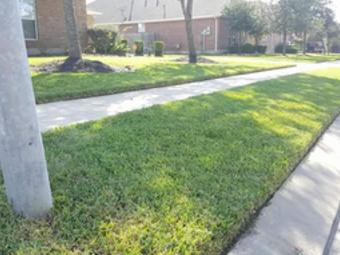 Lawn Mowing Contractor in Pasadena, TX, 77503