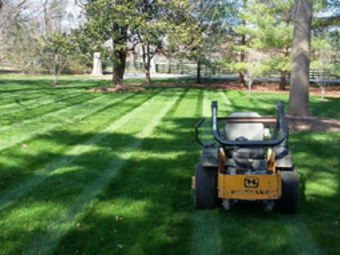 Lawn Mowing Contractor in Louisville, KY, 47130