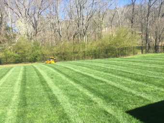 Lawn Mowing Contractor in Shepherdsville, KY, 40165