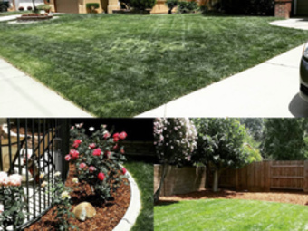 Lawn Mowing Contractor in North Highlands, CA, 95660