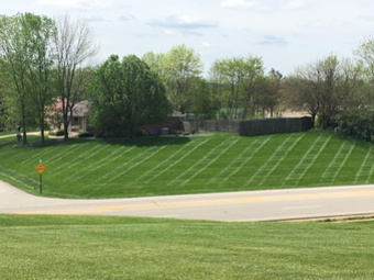 Lawn Mowing Contractor in Lawrenceburg, IN, 47018