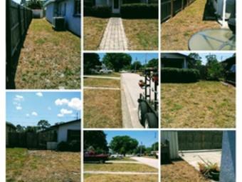 Lawn Mowing Contractor in St.Petersburg, FL, 33703