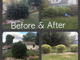 Lawn Mowing Contractor in Louisville , KY, 40291