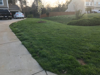 Lawn Mowing Contractor in Charlotte , NC, 28227