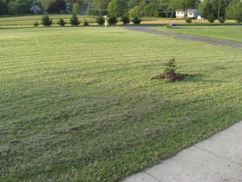 Lawn Mowing Contractor in Okc, OK, 73135