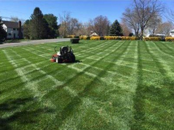 Lawn Mowing Contractor in Grove City, OH, 43123