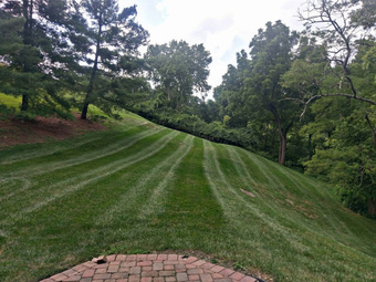 Lawn Mowing Contractor in Cincinnati, OH, 45247