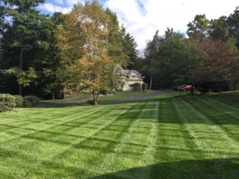 Lawn Mowing Contractor in Cincinnati, OH, 45245